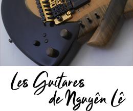 Les Guitares de Nguyên Lê, des réalisations de Julien Gendre